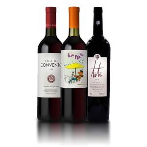 Kit de vinos Papá Viajero